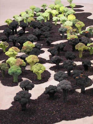 Gross National Happiness, Erasmus Huis, Jakarta. 2007, detail installation, broccoli trees, wax, seeds, black rice.