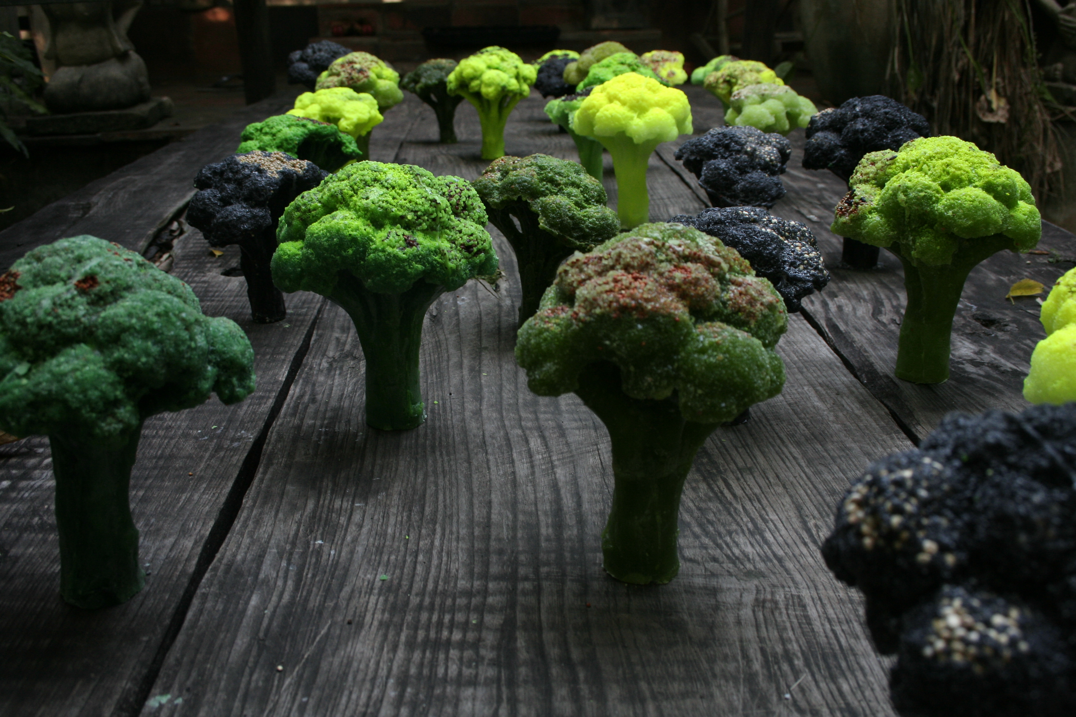 detail installation, broccoli trees, wax, seeds.